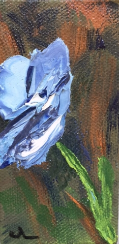 small blue poppy painting