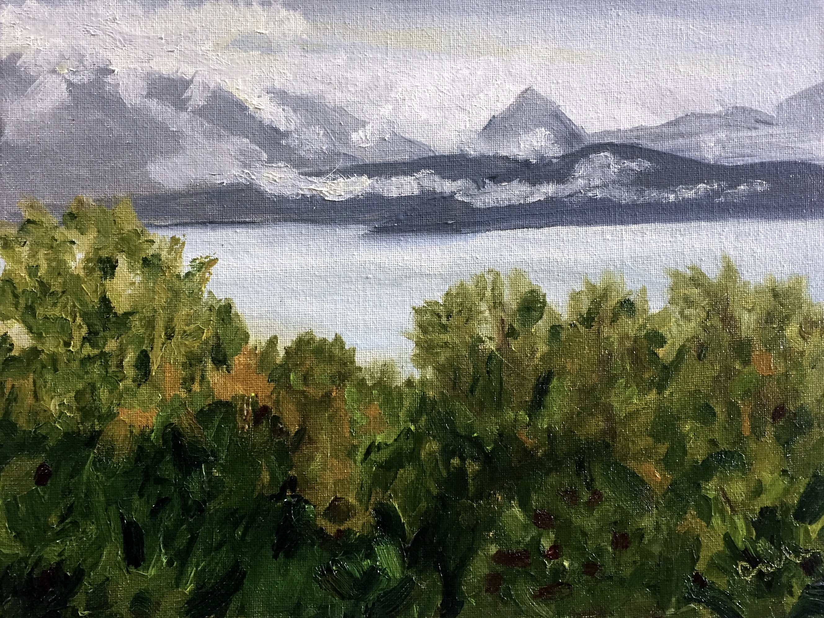 Fall in Kachemak Bay Painting